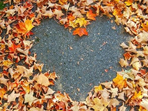 Leaves-heart