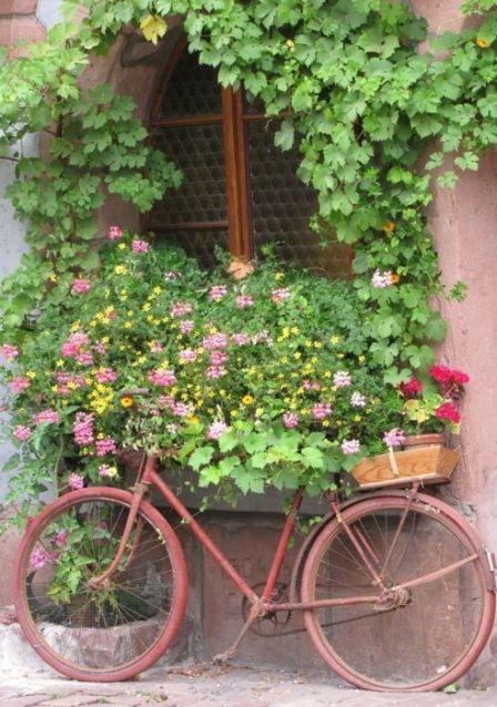 bike-flowers