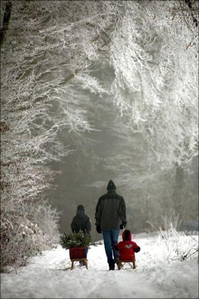 snowy-walk