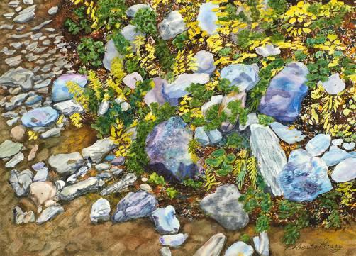 Roberta-Parry-Creek-Edge-Rock-Garden