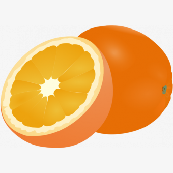 4524996_orange-fruit-png-fruit-clipart-orange-logo-png